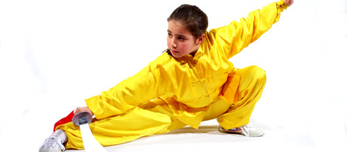 Kung Fu Giocando