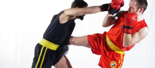Sanda (Combattimento)